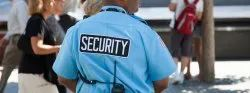 Service Security Agency License Consultant, in Pan India