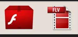 Flash Animation Service