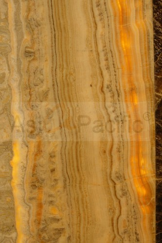 Colored Marble - Golden Portoro Marble Manufacturer from Mumbai