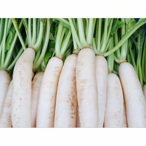 Fresh Radish, No Preservatives, Rs 18 /kilogram Fresh Taste | ID:  20912561412