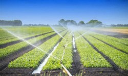 Irrigation Plumbing Services