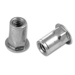 Advance Dynamic Solution Half Hex Rivet Nut, Size: M4 And M6