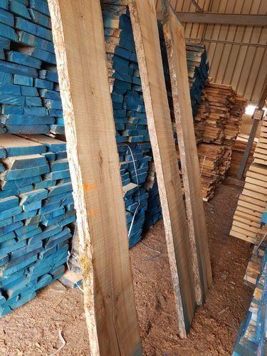 Sawn Timber White Ash Wood Manufacturer From Gandhidham