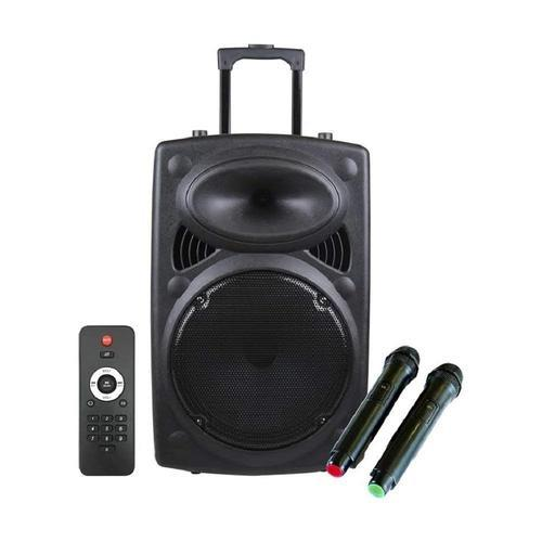 12 Inch Karaoke Bluetooth Pa System Portable Trolly