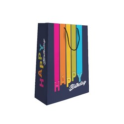 Gift Paper bag for Birthday
