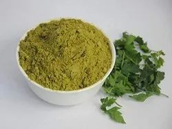 Natural Curry Leaves Powder (Kadi patta), Packaging Size: 25kg, Packaging Type: Plastic Bag
