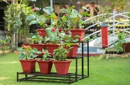 Terrace Garden Flower Pot Stand