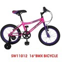 Hl 11012 16 Inch BMX Bicycle