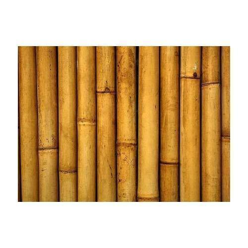 Wood Bamboo Pole 0 20 Mm