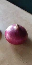 Bhima Rk Kalyan Onion Seeds