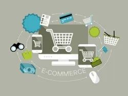 B2B Ecommerce Solution (with Magento Integration)