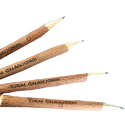 Neem Wood Pen