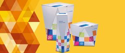 Home Delivery Paper Mono Carton Printing Service, For Packaging Box, in delhi