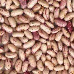 Avail Organic Indian Oragnic Rajma Chitra