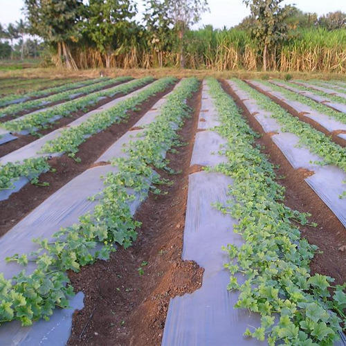 Mulching Agriculture Sheets