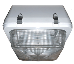 Induction Security Lighting