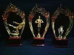 Karate Girl Award Trophy