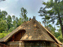 Thatched Roof Constructions