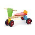 Tiny Trike Tricycle