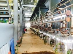 Cooking Oil Bleaching Plant