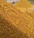 Yellow Dried Turmeric Finger For Ayurvedic Medicine, Packaging Size: 50kgs