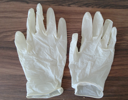 260 mm Mid forearm Surgical Gloves, Size: 6.5 inches