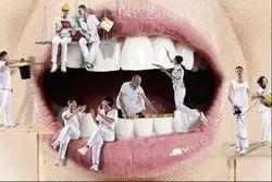 Dental Basics Made Perfect Course