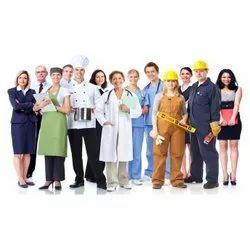 Labour Consultants