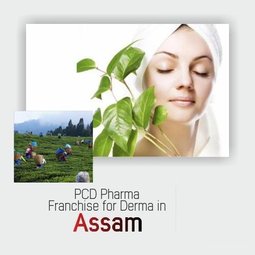 Cosmetic Franchise - Pharma Skin Care Products Franchise In Madhya