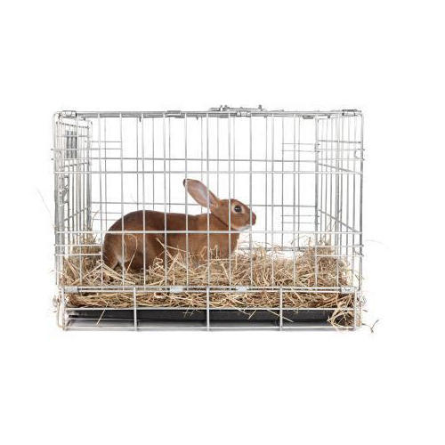 Steel Silver Rabbit Cage, for Home Purpose