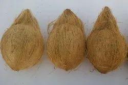 Semi Husked Coconut Price