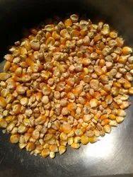 Indian Maize Food Grains And Pulses, Madhya pradesh