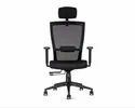 Godrej Director Chair