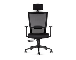 Black Fabric Godrej Director Chair for Office