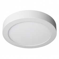 8W Delia LED Surface Down Light