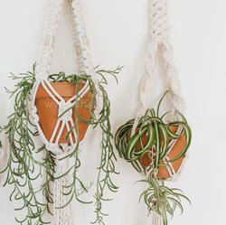 macrame plant hangers wholesale