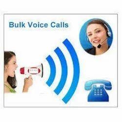 Bulk Voice Calls