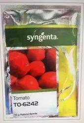 Syngenta Tomato Seed TO-6242