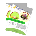 Sales Sheet