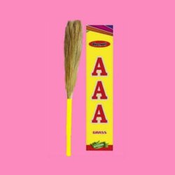 AAA Grass Broom