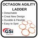 Octagon Ladder