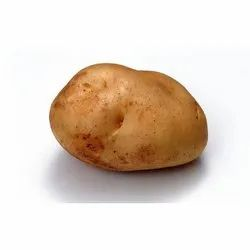 A Grade Cold Storage Organic Potato, Packaging Size: 25 kg, Pesticide Free (for Raw Products)
