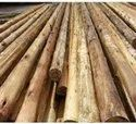 Timber Poles Manufacturer and Supplier