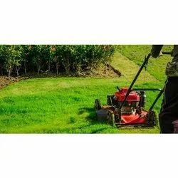 Lawn Garden Designing Services