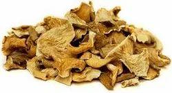 Solar Dried Oyster Mushroom