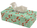 Printed Tissue Paper Box