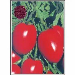 DS-101 Hybrid Tomato Seeds