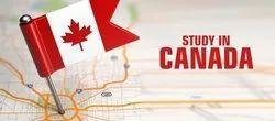 Best Canada Student Visa Consulatnt in Amritsar