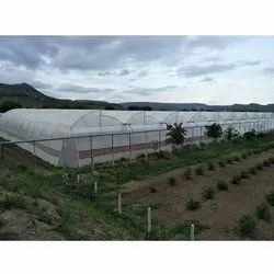 Poly House, For Agriculture