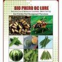Bio Phero Bc Bactrocera Cucurbitae (Melon Fruit Fly)